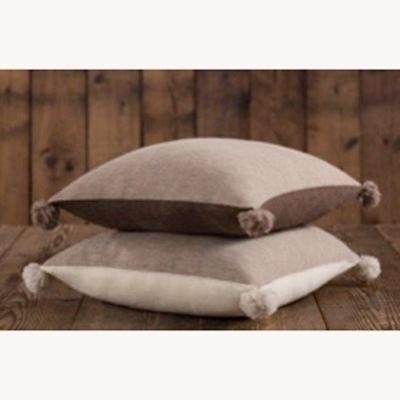 Dandi Reversible Pillows