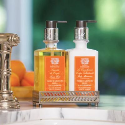 Hand & Body Wash paired with the Body Moisturizer in the nickel tray