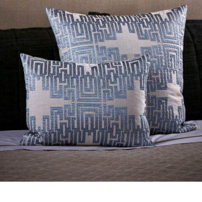 Science Decorative Pillow