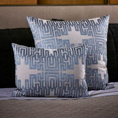 Science Decorative Pillow